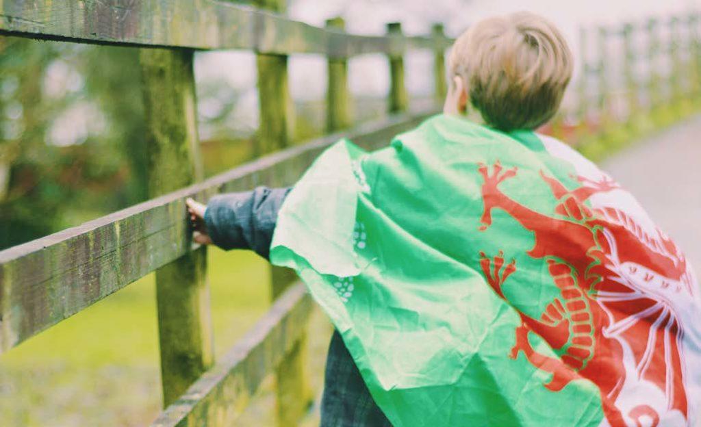 Promoting Welsh Language Through Volunteering